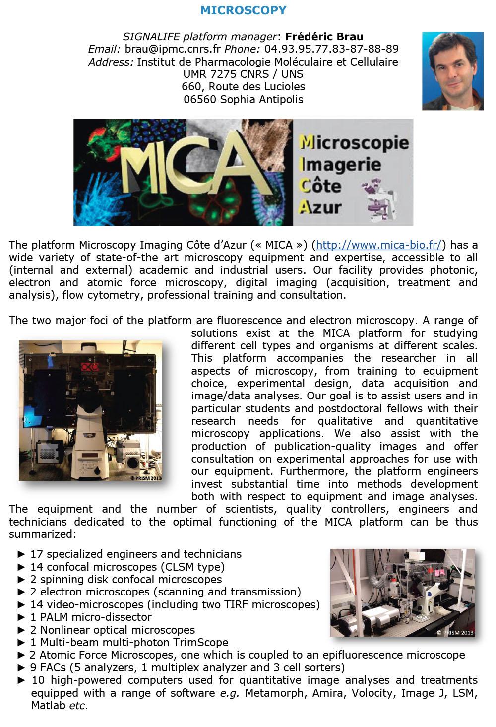 Microscopy OK-1