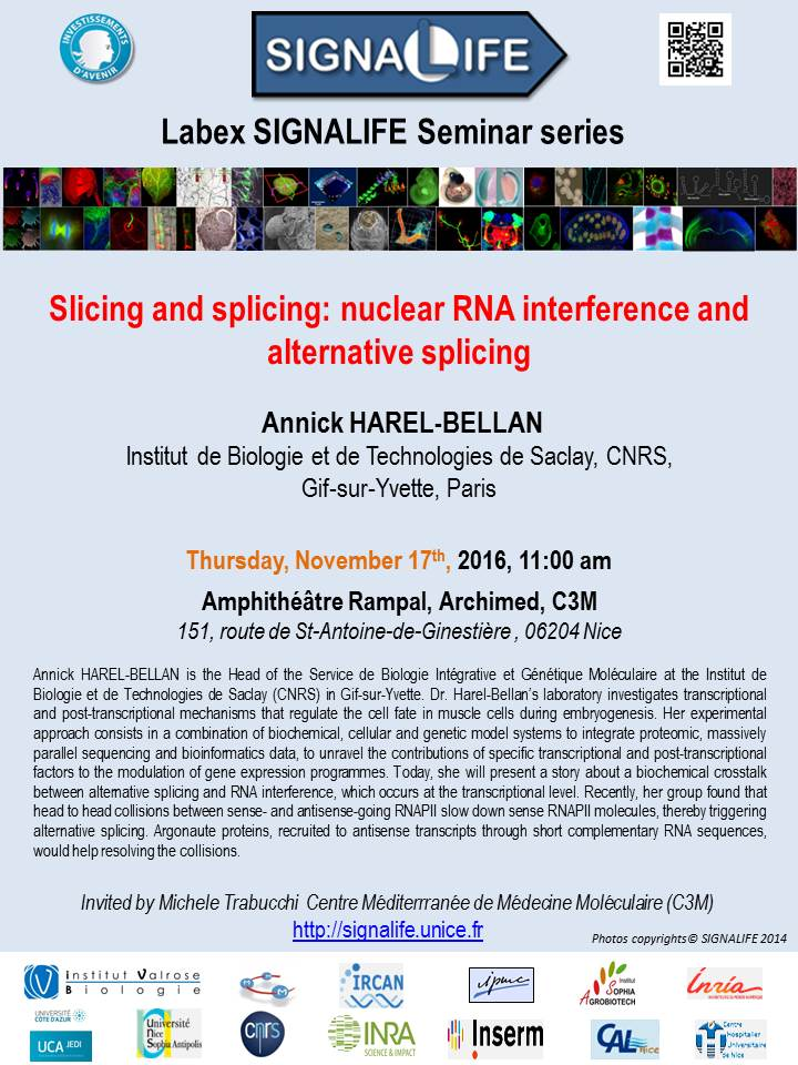 Harel Bellan SIGNALIFE Seminar Series 17 Nov 2016 OK